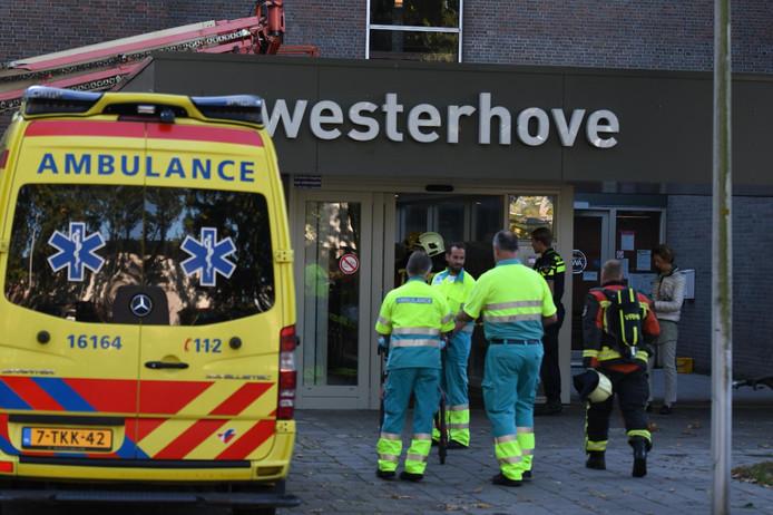 Westerhove