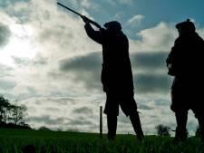 Konijn en haas op rode lijst, Twentse jagersvoorman komt in 't geweer: 'Dit kan gewoon niet'