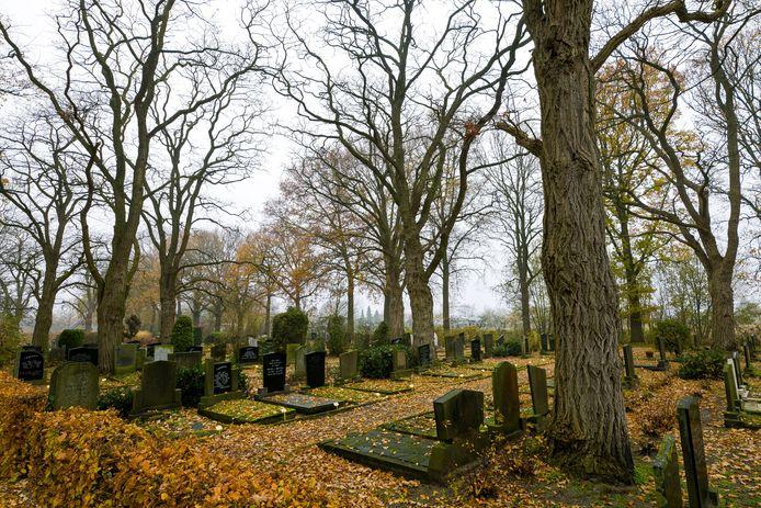 Om de bijzondere bomen bij grafvak D te behouden wil de gemeente voorlopig alleen bovengronds ruimen. De ruiming bij de begraafplaats aan de Tilburgseweg in Sprang-Capelle stuit op verzet.