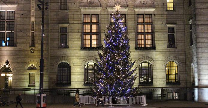 De XXL-kerstbomen van Groen-Direkt uit Boskoop.
