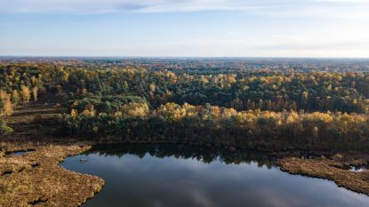 Vijftig tinten herfst: zo ziet de Limburgse natuur eruit van bovenaf