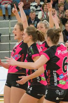 Conflict Flamingo's, Sneek en volleybalbond over carnavalswedstrijd