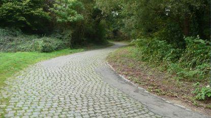 Moskesstraat in Overijse scherprechter op WK 2021?