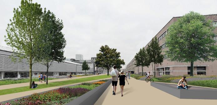 De onderwijscampus zoals D66 deze voor ogen heeft als de Onderwijsboulevard in Den Bosch voor auto's wordt afgesloten.