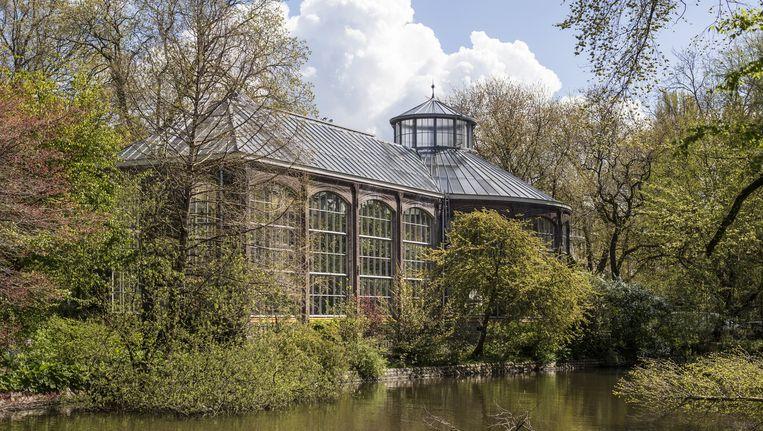 De Hermitage kampt met een overschot aan warmte die de Hortus goed kan gebruiken. Beeld Floris Lok
