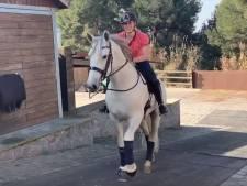 Paard dat Britt van John de Mol kreeg kan 'zweven'