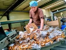 Grootste pepernotenproducent van Nederland keert na 20 jaar terug in Numansdorp: 'We komen echt thuis'