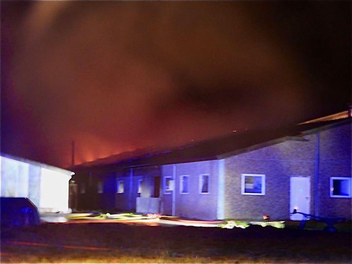 Bij aankomst van de brandweer sloegen de vlammen al uit het dak van de stal.