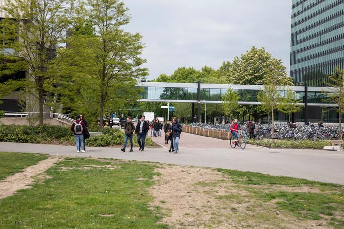 De TU/e campus (archieffoto).