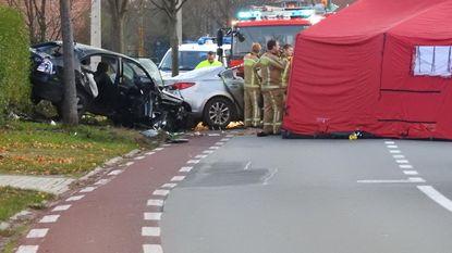 Beschonken bestuurder krijgt 6 maanden na dodelijk ongeval