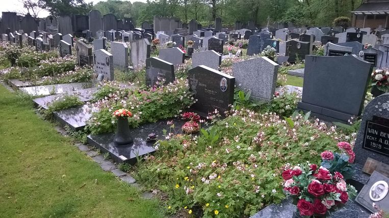 De begraafplaats in Lot is een goed voorbeeld van vergroening.