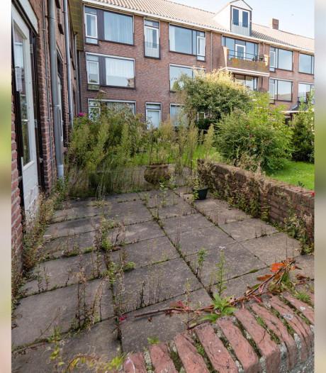 31 huizen op plaats Koetshuis in Nieuwkoop