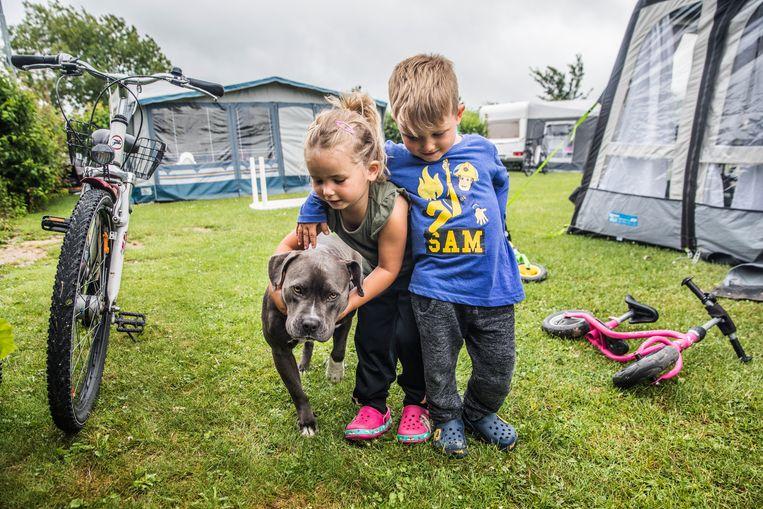 Kinderen op camping De Pekelinge.  Beeld Aurélie Geurts