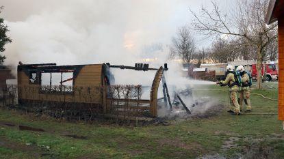VIDEO. Moeder en zoon komen om bij brand in chalet op camping in Herentals