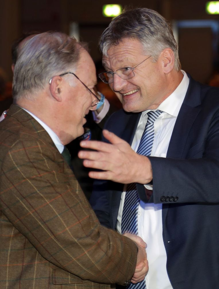 Joerg Meuthen (rechts) en Alexander Gauland (links)
