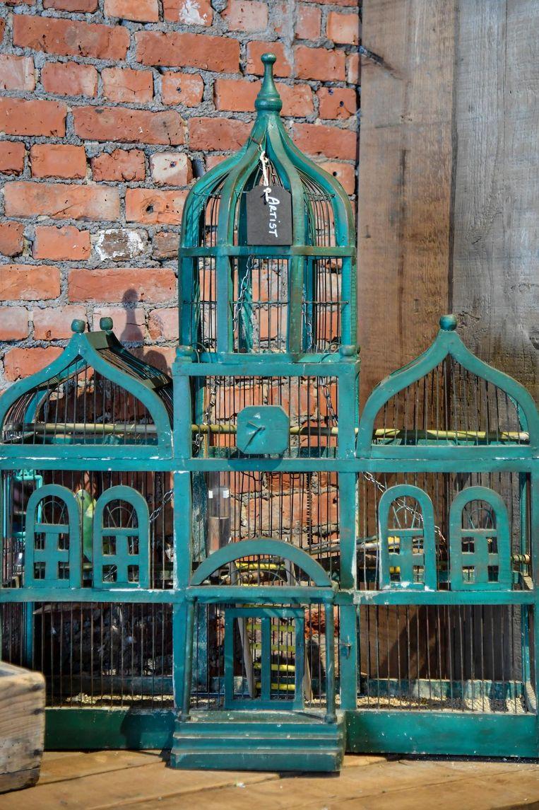 Zelfs kanarie 'Artist heeft een vintage vogelkooi.