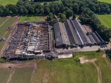 Varkenssector slaat alarm na brand Agelo: 'Dit jaar al 251.000 dode dieren'