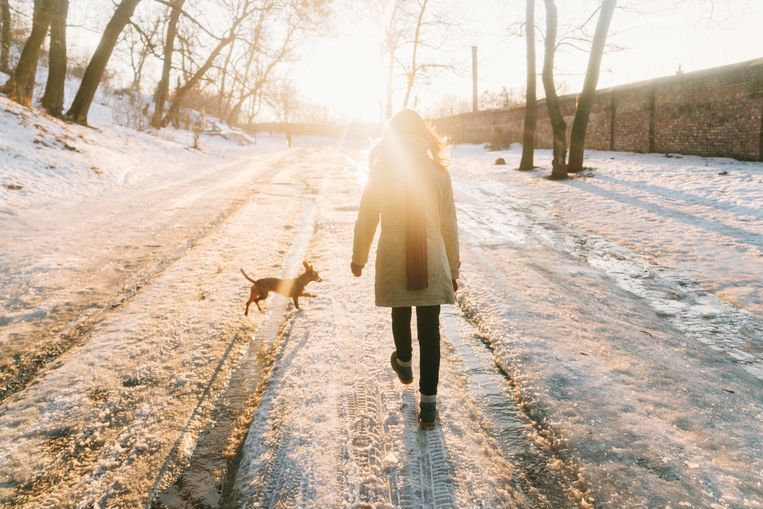 Young Caucasian woman walking in park with dog in winter