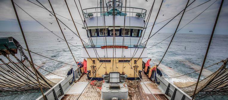 Pulsvissers aan het werk op de Noordzee. Beeld ANP