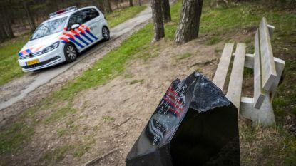 Monument voor Nicky Verstappen weer doelwit van vernieling