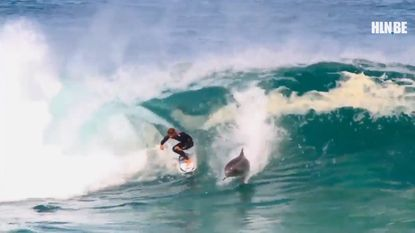Gracieuze surfer maakt iets ongelooflijks mee...(én nog 6 sportvideo's die u deze week niet mocht missen)