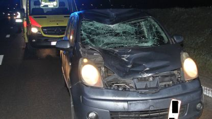 Fietser sterft bij aanrijding op A19 in Menen