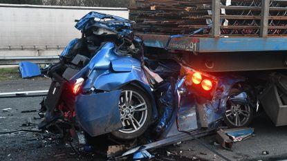 E19 volledig versperd in Brecht na ongeval met vrachtwagens: twee doden