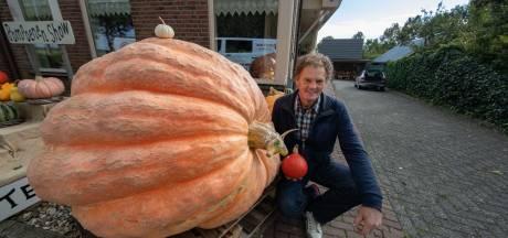 Van deze megapompoen in Kampen kun je een jaar lang soep eten