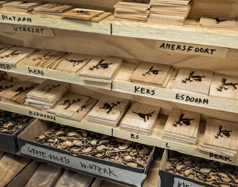 Rob de Looff weet precies waar het hout vandaan komt, waarvan hij zijn muziekdoosjes maakt. Beeld Patrick Post