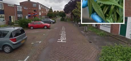 Politie ontdekt kwekerij en 200 gram drugs in huis agressieve Vlissinger