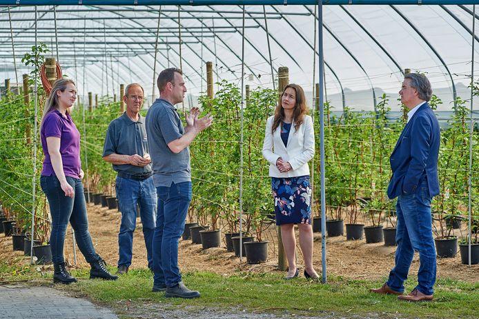 Commisaris van de Koning Wim van de Donk (rechts) en gedeputeerde Anne-Marie Spierings nemen een kijkje bij apserge- en fruitkweker Maarten van Hoof (midden) in Olland.