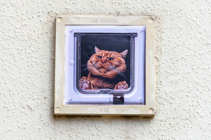 Kunst tijdens Kaapstad. De Tilburgse binnenstad werd drie dagen door kunstenaars uit binnen- en buitenland gekaapt.