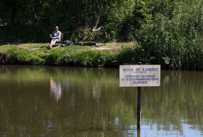 Visvijver in Meddo heeft last van een raadselachtige vissterfte.