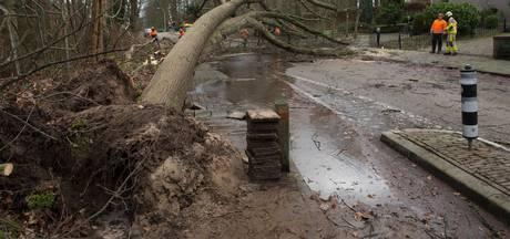 Stormschade in Doetinchem is 600.000 euro