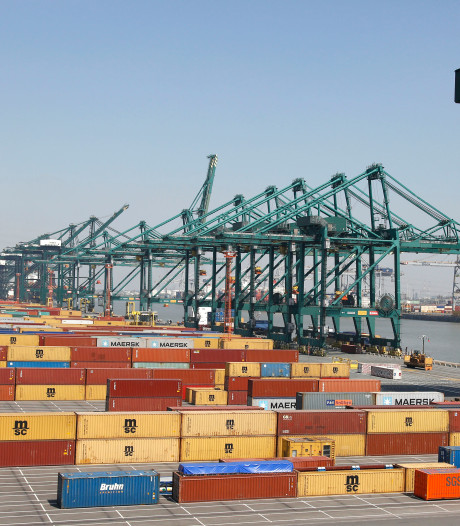 Containerterminals Antwerpen 's nachts open om filedruk te verminderen