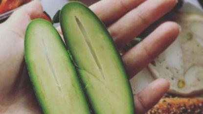 De pitloze avocado met eetbare schil verovert stilaan het internet