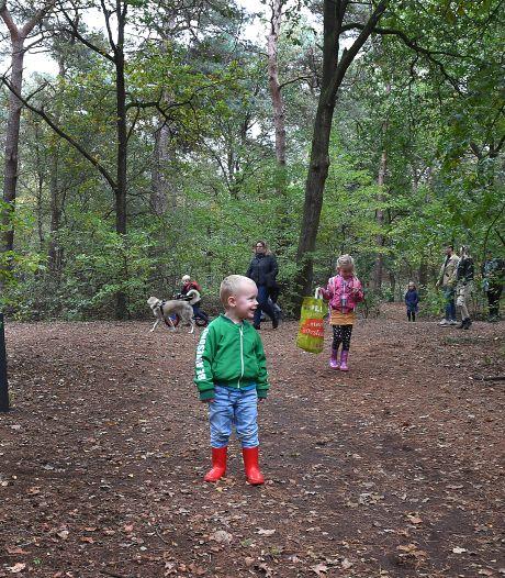 Met zijn allen weer het bos in voor de broodnodige afleiding