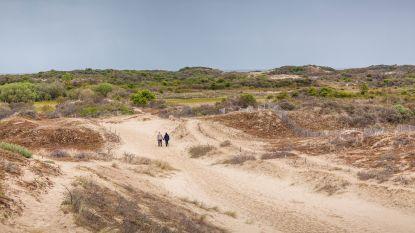 Stukje Sahara aan de kust