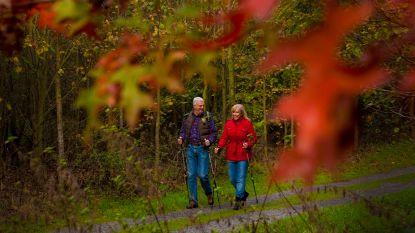 Van wandelingen over degustatietour tot theater: dit kan je tijdens de herfstvakantie in Poperinge doen