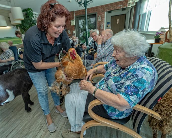 Nokkie Zalm van Swiffers Hoeve gaat geregeld met dieren op bezoek bij ouderen. Haar dierenopvang en de Werkgroep Dementie Vriendelijk Kaag en Braassem hebben geld gekregen.