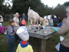 Voortbestaan kinderboerderijen Ede voorlopig gewaarborgd