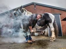 Berry (31) beslaat paarden: 'Ik ben al zo vaak gebeten, geschopt en geduwd'