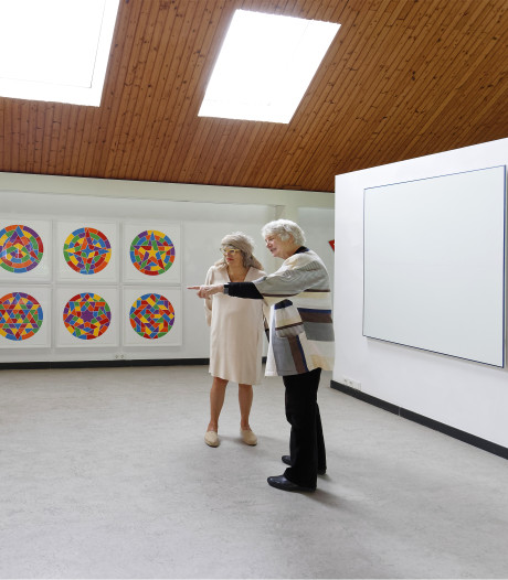 Een heel bijzondere kunstcollectie in Liempde
