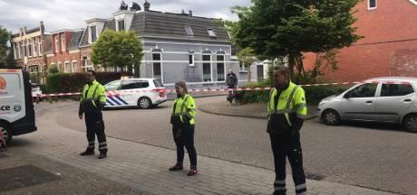 Opnieuw een ree gesignaleerd in woonwijk Leeuwarden