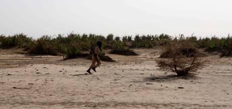 Trois soldats belges blessés au Mali