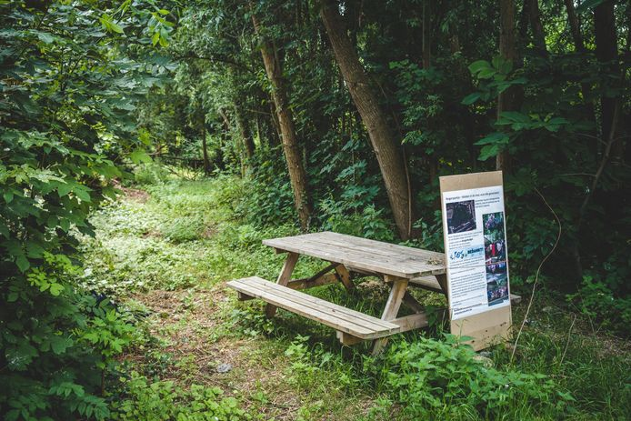 Het Reigerspark in Gent krijgt definitief een groene bestemming.