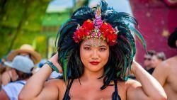 In beeld: de mooiste kapsels van Tomorrowland