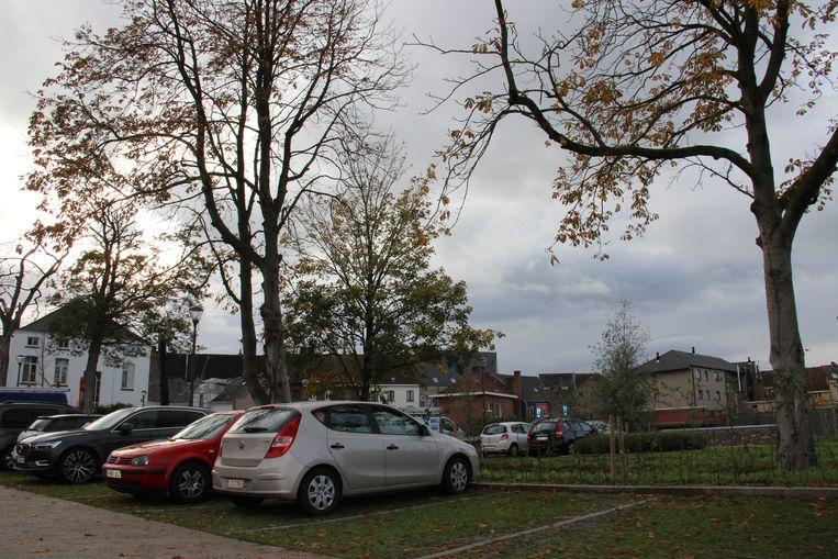De bomen op parking Familia worden op 14 november gesnoeid.