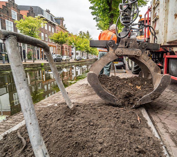 Beeld van een vorig 'kapseizoen' in Delft: de gemeente haalt twee zieke iepen weg bij de Lange Geer.