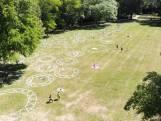 Grote cirkels om in te picknicken in het Utrechtse Julianapark